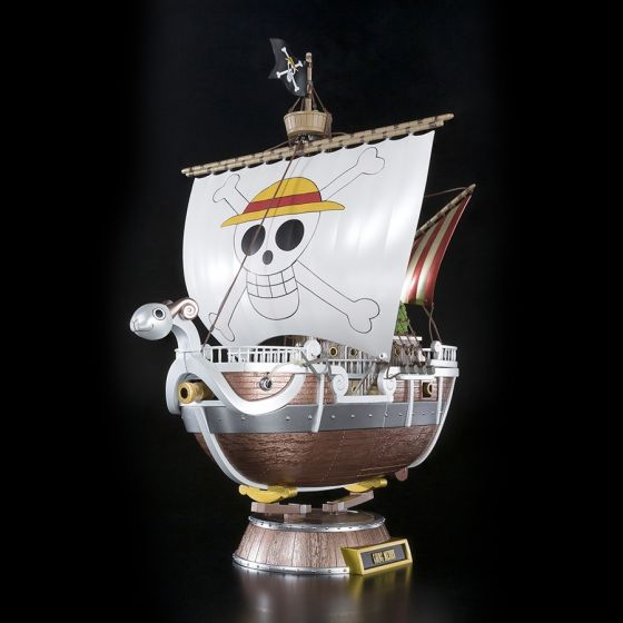 One Piece Going Merry 20th...